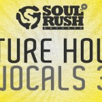 Future House Vocals Vol. 3 Samples Library – Wav Files